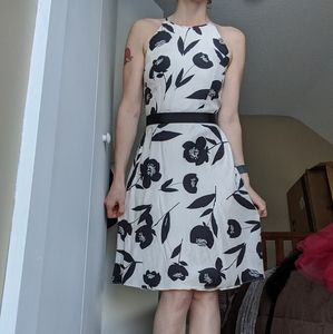 Size 0 Ann Taylor 100% silk dress